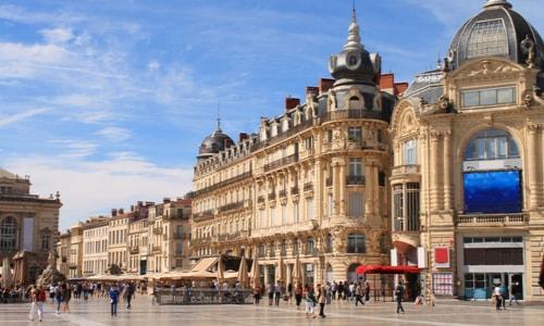Dératisation Montpellier
