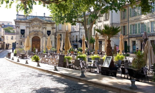 dératisation désinsectisation désinfection Avignon 84