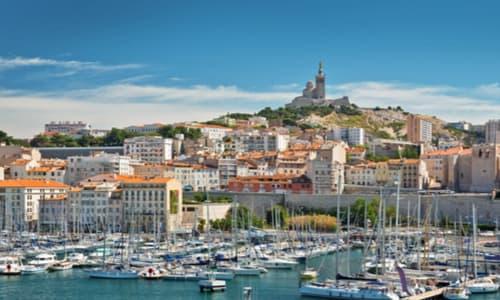dératisation désinsectisation désinfection Marseille 13